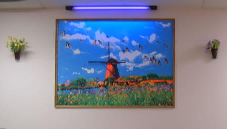 Blacklight windmill